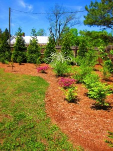House For Sale Apex Holly Springs